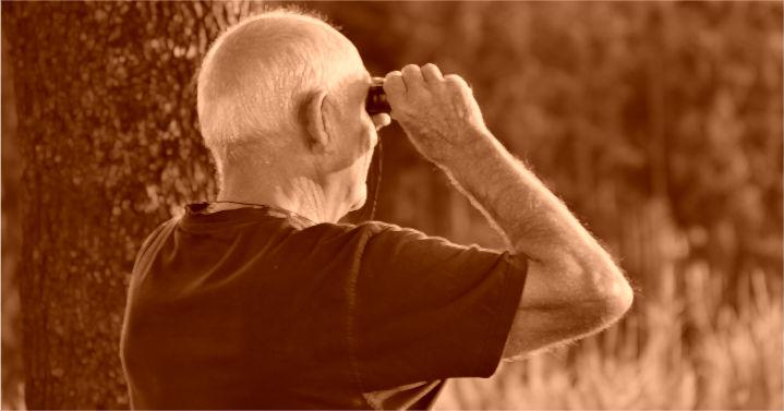 Vai solicitar sua aposentadoria? Fique atento às novas regras